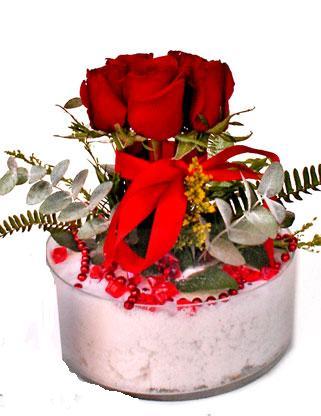 Ankara çiçek online çiçek siparişi  SEVMEK GÜZEL DIYENLERE 7 ADET GÜL