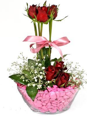 Ankara hediye çiçek yolla  SEVIYORUM DIYENLER 7 kirmizi gül tanzim