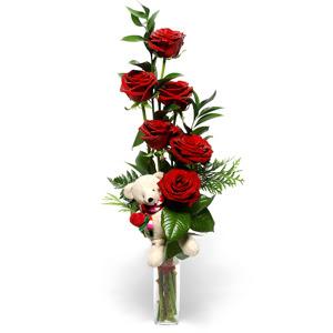 Ankara çiçek gönderme  7 adet kirmizi gül ve pelus oyuncak