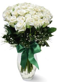 19 adet essiz kalitede beyaz gül  Ankara çiçekçiler