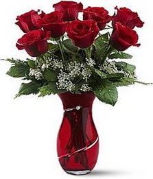Vazo içinde 8 adet kirmizilar içinde güller  Ankara internetten çiçek siparişi