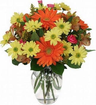 Ankara hediye sevgilime hediye çiçek  vazo içerisinde karışık mevsim çiçekleri