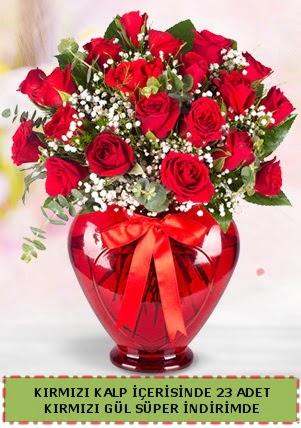 Kırmızı kalp içerisinde 23 adet kırmızı gül  Ankara çiçek satışı