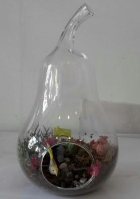 Armut orta boy cam terrarium tanzim  Ankara çiçekçi telefonları