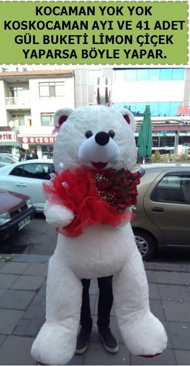 Koskocaman beyaz ayı ve 25 adet gül  Ankara çiçek siparişi sitesi