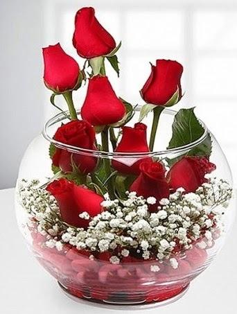 Kırmızı Mutluluk fanusta 9 kırmızı gül  Ankara çiçek siparişi sitesi