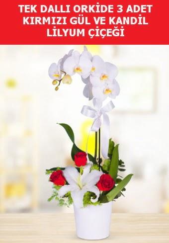 Tek dallı orkide 3 gül ve kandil lilyum  Ankara çiçek yolla