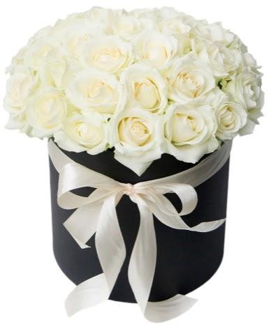 41 adet özel kutuda beyaz gül  Ankara çiçek satışı  süper görüntü