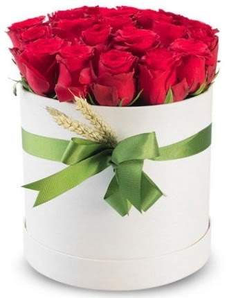 Özel kutuda 25 adet kırmızı gül çiçeği  Ankara çiçek satışı