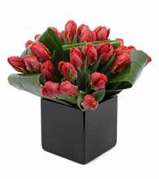 Ankara çiçek servisi , çiçekçi adresleri  mika yada cam Vazo içerisinde kalite lale