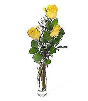 Ankara internetten çiçek siparişi  3 adet kalite cam yada mika vazo gül