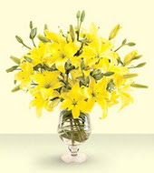 Ankara online çiçek gönderme sipariş  mika yada cam vazo içinde sari lilyum özel