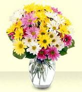Ankara internetten çiçek siparişi  mevsim çiçekleri mika yada cam vazo