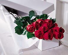 Ankara çiçek satışı  özel kutuda 12 adet gül
