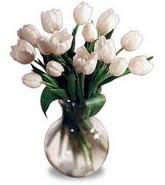 Ankara çiçek yolla  beyaz lalelerden cam yada mika vazo özel