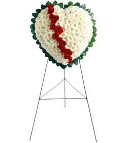 Ankara internetten çiçek siparişi  kalbimin tek sahibisin benim
