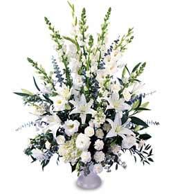 Ankara online çiçek gönderme sipariş  saf temiz sevginin gücü çiçek modeli
