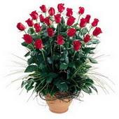 Ankara uluslararası çiçek gönderme  10 adet kirmizi gül cam yada mika vazo