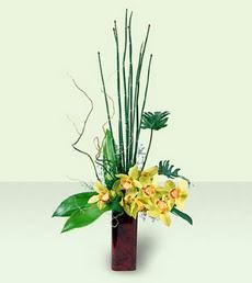Ankara çiçek siparişi sitesi   cam yada mika Vazoda dal orkide tanzim