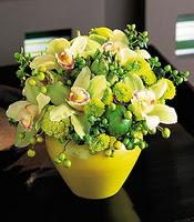 Ankara internetten çiçek satışı  5 adet cam yada mika vazoda orkideler