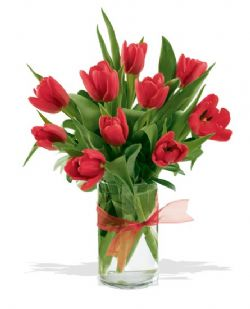 Ankara online çiçek gönderme sipariş  cam yada mika vazoda 10 adet özel lale