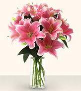 Ankara uluslararası çiçek gönderme  Star Gazer cam yada mika vazoda 6 adet