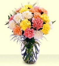 Ankara online çiçek gönderme sipariş  cam yada mika vazoda renkli karanfiller