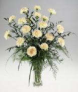 Ankara internetten çiçek satışı  cam yada mika vazoda  krem karanfiller