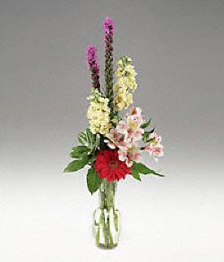 Ankara çiçek siparişi vermek  cam yada mika vazoda mevsim çiçekleri