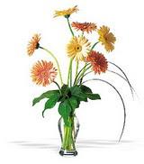 Ankara online çiçekçi , çiçek siparişi  cam yada mika vazoda 7 adet gerbera