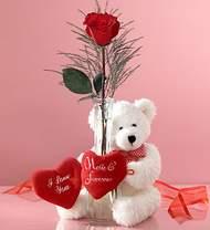 tek gül ve oyuncak pelus  Ankara çiçek gönderme