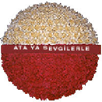 arma anitkabire - mozele için  Ankara çiçek gönderme sitemiz güvenlidir