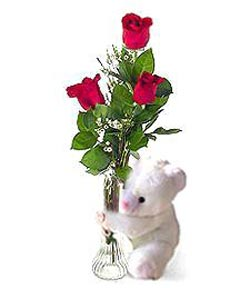 oyuncak ve 3 adet gül  Ankara çiçek siparişi sitesi
