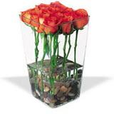 cam vazo içerisinde 11 gül   Ankara çiçek gönderme sitemiz güvenlidir