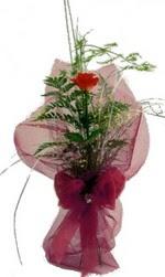 tek kirmizi gülden buket  Ankara internetten çiçek siparişi