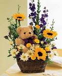 karisik aranjman ve ayicik   Ankara çiçek gönderme