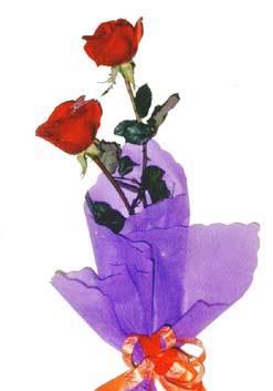 2  adet kirmizi gül buketi   Ankara çiçek , çiçekçi , çiçekçilik