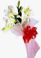 Ankara çiçek , çiçekçi , çiçekçilik  ince vazoda gerbera ve ayi