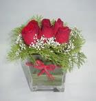 6 adet kirmizi gül camdadir   Ankara çiçek yolla
