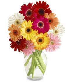 Ankara uluslararası çiçek gönderme  cam vazo içerisinde karisik gerbera çiçekleri