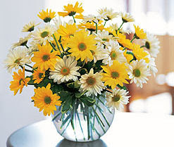 Ankara internetten çiçek satışı  cam vazo içerisinde 3 adet krizantem demeti