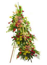 üç katli perförje çiçegi  Ankara çiçekçi mağazası