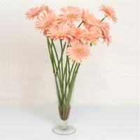 Ankara çiçek siparişi sitesi  ince cam vazoda 15 adet gerbera çiçegi