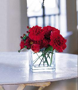 Ankara ucuz çiçek gönder  kirmizinin sihri cam içinde görsel sade çiçekler