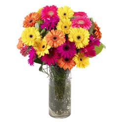 KARISIK GERBERALARDAN CAM VAZO TANZIMI  Ankara güvenli kaliteli hızlı çiçek