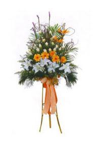 Ankara çiçek mağazası , çiçekçi adresleri  Kazablanka, gerbera ve güllerle hazirlanmis ferfor