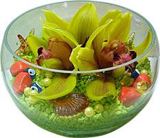 Ankara cicek , cicekci  3 adet cam içerisinde kandil orkide