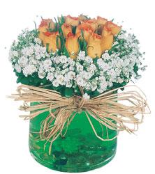 Ankara internetten çiçek satışı  Cam yada mika içerisinde 9 adet  gül aranjmani