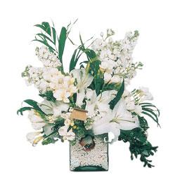 Ankara internetten çiçek siparişi  sadece beyazlardan olusmus mevsim cam yada mika tanzim