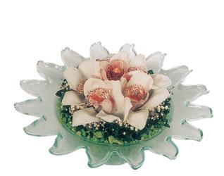 Ankara hediye sevgilime hediye çiçek  Cam içerisinde 3 adet kandil orkide